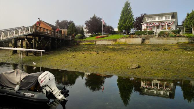 Gig Harbor Encounters – Washington State