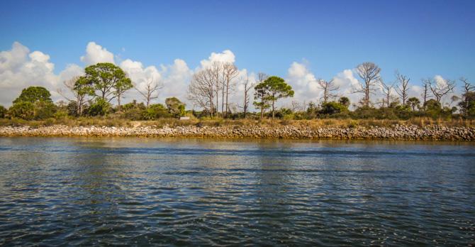 Palm Island-4