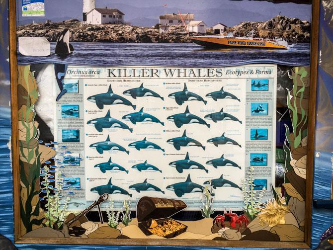 Fisherman's Wharf-13