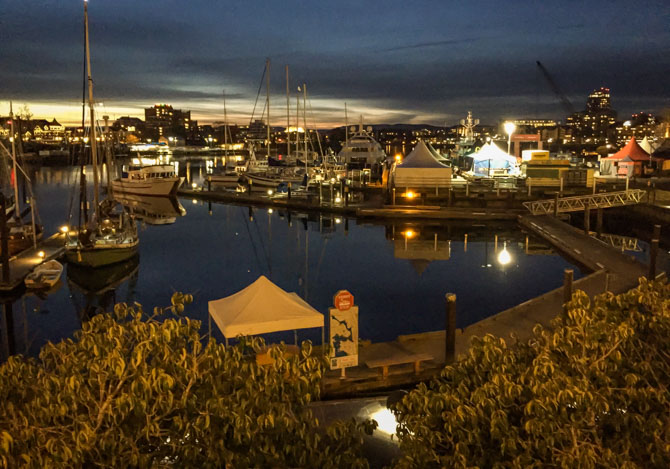 Downtown Victoria at Night-8