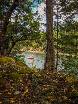 Hike to Conover Cove-5