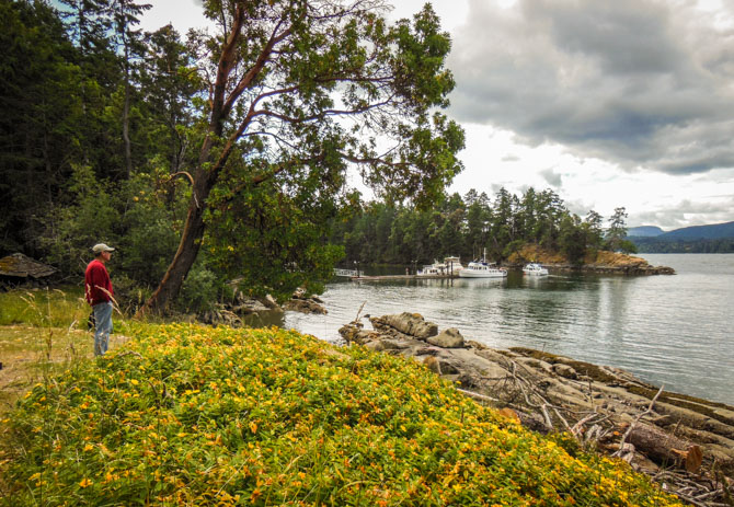 Hike to Conover Cove-50