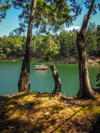 Hike to Conover Cove-6