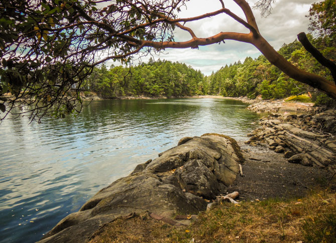 Hike to Conover Cove-65