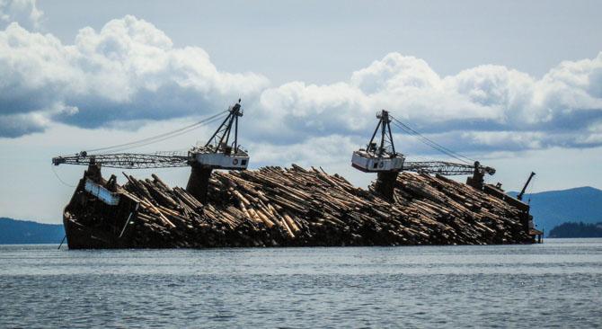 Log Boat-1