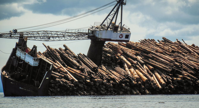 Log Boat-2