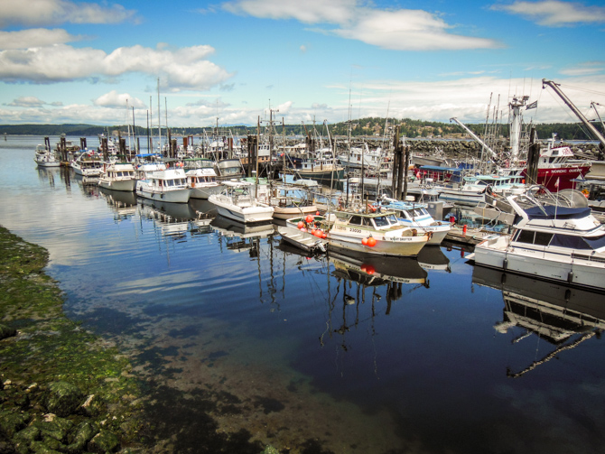 Campbell River-11